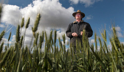 CTY-0003228 © WestPix Bencubbin farmer Mark Fitzpatrick is one of 47 farmers in a David and Goliath legal battle against Emerald Grain. 22 AUGUST 2016 Picture: Danella Bevis The West Australian