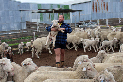CTY-0003979 © WestPix Cadoux farmer Bryce Macnamara says the downpours of rain in the last week will mean they will be keeping their sheep. Picture: Rueben Hale Countryman
