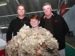 CTY-0004003 © WestPix Taking hold of a mountain of wool fleece samples, Jonty Robinson 11, flanked by his father Ross and Elders Lake Grace wool agent Graeme Taylor, was only to proud of his family's East Mundalla wool clip which sold to a top of 1324 cents/kg greasy. Picture: Bob Garnant