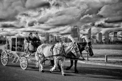 FEA-0007276 © WestPix An old horse and carraige ride in South Perth. Picture: Shaun Fearn