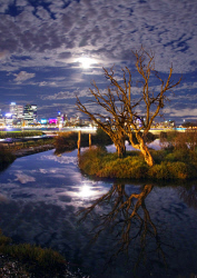 FEA-0007284 © WestPix Stormy night at Millers pond over looking Perth. Picture: Shaun Fearn