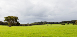 IMB-0006147 © WestPix Road trip panorama - Margaret River. Grey clouds over green fields.