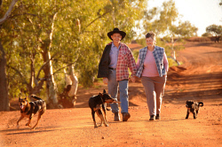 KGM-0019946 © WestPix Emu Creek station beef producers Darryl Penny & Joyce Penny walk in the early morning through the now dry Emu Creek riverbed.. With working dogs Murphy (on left)  Ripper (black & tan kelpie) & Tilly (black & white tiny puppy)