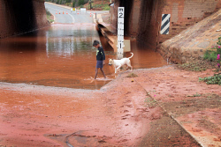 KGM-0029252 © WestPix The City of Kalgoorlie-Boulder has experienced very wet weather, the Boulder underpass, Auben Sullivan 6 with dog 'Pepper', the road was closed.