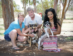 KGM-0029434 © WestPix Kalgoorlie Dog Adoption Group.  Trudy McClurg, Mark Norman with 'Sam', Abby Kumar-Buccilli with 'Murphy'.  Picture: Mary Meagher.