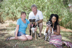 KGM-0029435 © WestPix Kalgoorlie Dog Adoption Group.  Trudy McClurg, Mark Norman with 'Sam', Abby Kumar-Buccilli with 'Murphy'.  Picture: Mary Meagher.
