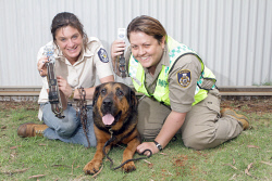 KGM-0029761 © WestPix RSPCA WA's Chain Exchange, Fiona Brown RSPCA inspector, 'Magnus' and Yvette Butterfield City of Kalgoorlie Boulder ranger and community liason officer.  Picture: Mary Meagher.