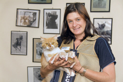 KGM-0029951 © WestPix RSPCA inspector Fiona Brown with 'Calamity Jane' and kittens.  Picture: Mary Meagher.