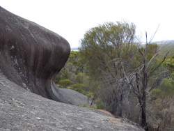 KGM-0030146 © WestPix Wave Rock from the other side. Picture: Rebecca Nadge