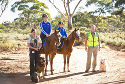 KGM-0031931 © WestPix Million Paws Walk preview, RSPCA Inspector Fiona Brown with Hagis the scottish terrier and Magnus the shepherd cross rottweiler, Dakota Nielsen, 13, on horse Allure, Laynie Scott, 8, on horse Indi and Ranger Coordinator Gary Burgess with Penny the border collie. (Picture: Louise White) 24th April 2017