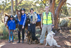 KGM-0031932 © WestPix Million Paws Walk preview, Laynie Scott, 8, with horse Indi, Dakota Nielsen, 13, with horse Allure, RSPCA Inspector Fiona Brown with Hagis the scottish terrier and Magnus the shepherd cross rottweiler and Ranger Coordinator Gary Burgess with Penny the border collie. (Picture: Louise White) 24th April 2017