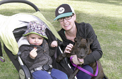 KGM-0032498 © WestPix Million Paws Walk.  Picture: Mary Meagher. Dexter Robinson 2 and Teagan Robinson with 'Shiva'.