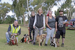 KGM-0032499 © WestPix Million Paws Walk.  Picture: Mary Meagher.  Brian Brown 'Molly', Erin Brown 12 'Splash', Katrina Brown 'Rocky', Shontae Hales and Joshua Thornton with 'Mulisha'.
