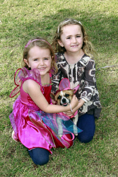 KGM-0032500 © WestPix Million Paws Walk.  Picture: Mary Meagher.  Evie Farley 4, Matilda Farley 7 with 'Pumpernickel'.