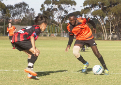 KGM-0035434 © WestPix Goldfields Soccer Association, South Red Strikers and North Scorchers. U 15s.  Picture: Mary Meagher. Strikers Tanika and Scorchers Sean Nzuwa.