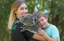 SUN-1401315 © WestPix This family-run wildlife sanctuary takes Aussie critters to meet people at care homes and schools. They're about to introduce two orphaned wombats into their cast of animals. West Oz Wildlife co-owner Beth Mullany with son Cooper (6) and Kiera the koala. Picture: Daniel Wilkins