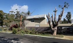 TWA-0036123 © WestPix Damage at the intersection of Princess Road and Bay Streets Claremont, where what appears to have been a tornado ripped through lifting house roofs and stripping trees.  Picture: Bill Hatto  14 July 2014  The West Australian   ***  ***