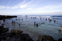 TWA-0053214 © WestPix People gather Abalone at Mettams Pool in Perth's North on the first day of the season. Bag limit of 15 saw hundreds of people brave the waters for the delicacy. 02/11/2014 Picture: Simon Santi, The West Australian