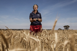 TWA-0059931 © WestPix No joy for Kondinin Farmers: Farmer Lindsay Tuckwell and her husband Grant have been hit hard by frost this year. Pic: Michael Wilson The West Australian.