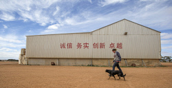 TWA-0067302 © WestPix Assistant farm manager Sandra Dormont walks past inspirational Chinese graffiti painted on one of the sheds at Connemara farm Lake King. 20th Nov 2013 Picture by Steve Ferrier / The West Australian.