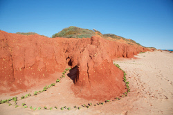 TWA-0069687 © WestPix Reddell Beach, Broome, with its low, red, pindan cliffs. Between the town jetty and Gantheaume Point. West Kimberley, Western Australia. Picture: Stephen Scourfield The West Australian