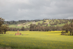 TWA-0069703 © WestPix Old homestead on Katrine Road, between Toodyay and Northam, in winter. Picture: Stephen Scourfield The West Australian