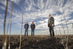 TWA-0070419 © WestPix Dry weather has played havoc with crops this season in Dalwallinu. Shire President Steven Carter and sons Todd Carter and Gavin Carter on the family farm. Picture: Simon Santi The West Australian