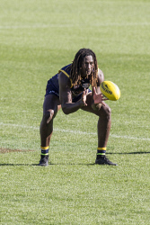 TWA-0070927 © WestPix West Coast Eagles training at Domain Stadium. Nic Naitanui  Picture: Simon Santi The West Australian