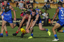 TWA-0072401 © WestPix WAFL. East Perth v West Perth at Leederville Oval. East Perth's Daniel Venables and West Perth's Luke Meadows scramble for the ball. PICTURE: NIC ELLIS    THE WEST AUSTRALIAN