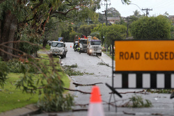 TWA-0072924 © WestPix Rochester Circle in Balga is closed alongside Celebration Park where dozens of trees' branches were snapped and others completely uprooted. Power lines had also come down. Damage from storm front. 31 JULY 2017 Picture: Danella Bevis The West Australian