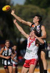 TWA-0073342 © WestPix WAFL Round 2 - Swan Districts vs South Fremantle at Bassendean Oval. Pictured - Swan Corey Gault wins the throw in over South's Zach Strom. Picture: Daniel Wilkins
