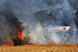 WAN-0000539 © WestPix Their was a bushfire emergency warning today for the eastern park of Parkerville in the Shire of Mundaring: Fire services fights a bush fire along Richardson Rd East today. Pic: Michael Wilson, WA News, 12th January 2014.