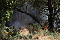 WAN-0000897 © WestPix Fire services mop up the remnants of a fire in bushland in Calista today. The fire burnt right to the edge of the park, directly across from the Kwinana Hub. Pic: Michael Wilson, WA News, 21st February 2014.