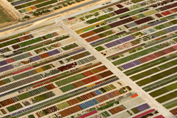 WAN-0011833 © WestPix Aerial view of colourful market gardens north of Perth. Picture Sandra Jackson The West Australian