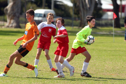 ALA-0002128 © WestPix Polonia goal keeper Lachie Hamersley gathers the ball. Picture: Laurie Benson Albany Advertiser