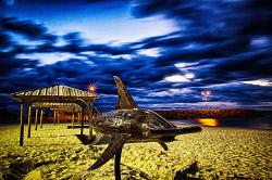 FEA-0007290 © WestPix Shark sculpture at Cottesloe beach Perth WA. Picture: Shaun Fearn