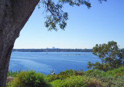 IMB-0006196 © WestPix View of Perth and Point Walter from Mosman Park bay park.  Photo by Rosaria imbroglia