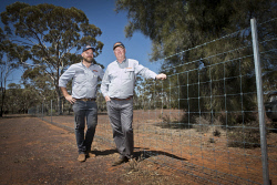 KGM-0035952 © WestPix Waratah territory sales manager Michael Sala Tenna and regional sales manager Paul Jones with some demonstration fencing at Hampton Hill Station for the GNRBA annual conference. (Picture: Louise White) 10th October 2017