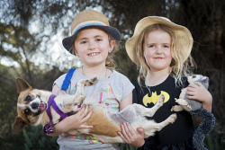 KGM-0036415 © WestPix Puppies on Parade, Matilda Farley, 8, holding Pumpernickel and her sister Evie Farley, 5.  (Picture: Louise White) 29th October 2017