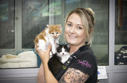 KGM-0036727 © WestPix Planet Pet and Aquarium manager Kayla De Vries with kittens.  Picture: Mary Meagher.
