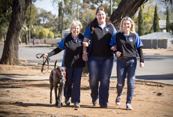 KGM-0036976 © WestPix Homeless animals day, SAFE carers 'Rhea', Janet Fotherby, Larissa Webber and Abby Murray.  Picture: Mary Meagher.