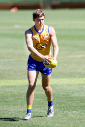 KGM-0040001 © WestPix West Coast Eagles 2017 draftee Brayden Ainsworth is competing for a role in the squad ahead of the upcoming AFL pre-season. Picture: Kelsey Reid / Kalgoorlie Miner