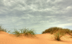 SMI-1400882 © WestPix Ironore tinged sand dune in Onslow. Picture: Peta Smith