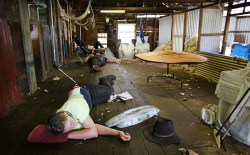 SUN-1404390 © WestPix Scenes in a shearing shed in Witchcliffe, just past Margaret River. Pictured - The shearers take a nap during the lunch break. Picture: Daniel Wilkins
