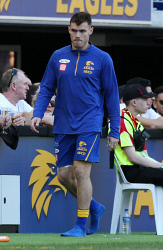 SUN-1404958 © WestPix AFL. West Coast Eagles v Port Adelaide at Optus Stadium in Perth. PIctured - Eagle Luke Shuey after coming off with injury. Picture - Justin Benson-Cooper/ The Sunday Times