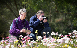 TWA-0053623 © WestPix German tourists (L) Sandra and Martin Graetz enjoying the spring wildflowers in bloom at Kings Park today. Picture: Megan Powell The West Australian.