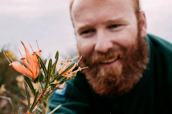 TWA-0073391 © WestPix Wildflowers/ Lesueur National Park: Ranger Tyson Isles with some Lambertia. Picture: Michael Wilson, The West Australian.