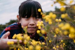 TWA-0073402 © WestPix Wildflowers/ Lesueur National Park: Chinese tourist Chen Zixuan looks through some Prickley Moses. Picture: Michael Wilson, The West Australian.