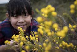 TWA-0073444 © WestPix Chinese tourist Chen Zixuan inspects a Prickley Moses Wattle at Lesueur National Park today. Picture: Michael Wilson, The West Australian.