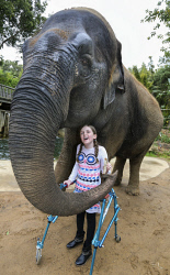 TWA-0076375 © WestPix Telethon kid Olivia Riley, nine, meets Tricia the elephant at Perth Zoo. PICTURE NIC ELLIS   THE WEST AUSTRALIAN